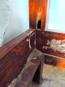 bunk bed 1 - damaged upright termites